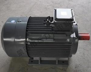 YE2系列三相异步电机价格