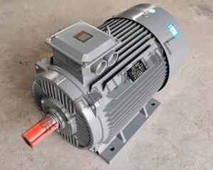 YE2系列三相异步电动机厂家